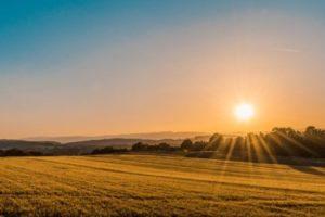 Fermierii și Antreprenorii din zonele rurale beneficiază de finanțare de la Raiffeisen și FEI